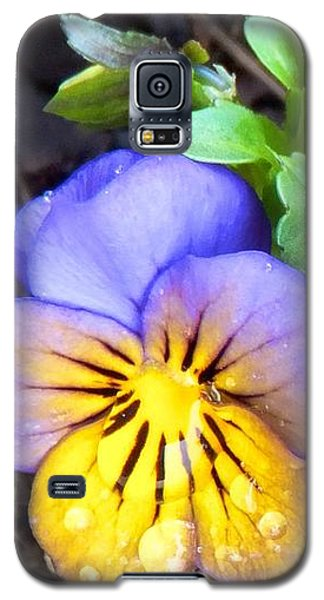 Pensees Bicolores Galaxy S5 Case by Marc Philippe Joly