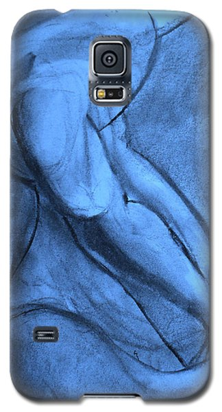 Pentimenti Galaxy S5 Case