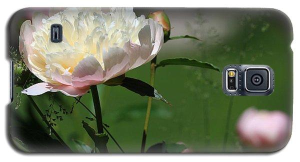 Peony Beauty Galaxy S5 Case