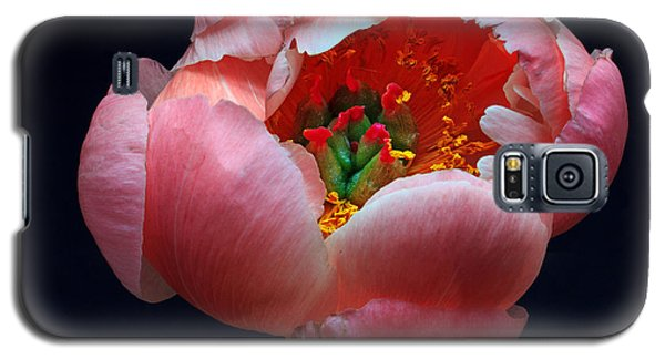 Galaxy S5 Case featuring the photograph Peony Bloom by Robert Pilkington
