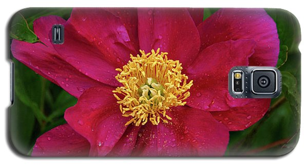 Galaxy S5 Case featuring the photograph Peony In Rain by Sandy Keeton