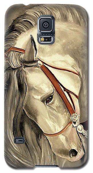Peralta Andalucian Galaxy S5 Case by Manuel Sanchez