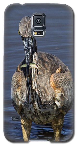 Perch Anyone? Galaxy S5 Case