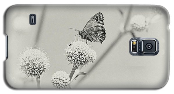 Perched Butterfly No. 255-2 Galaxy S5 Case