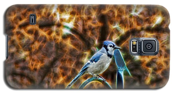 Galaxy S5 Case featuring the photograph Perched Jay by Cameron Wood