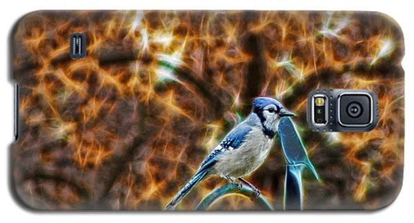 Perched Jay Galaxy S5 Case