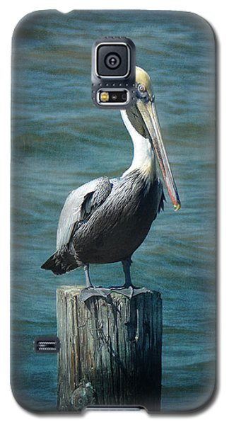 Perched Pelican Galaxy S5 Case