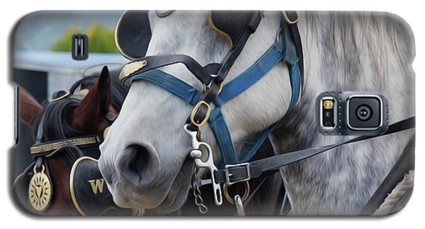 Percheron Horses Galaxy S5 Case by Theresa Tahara