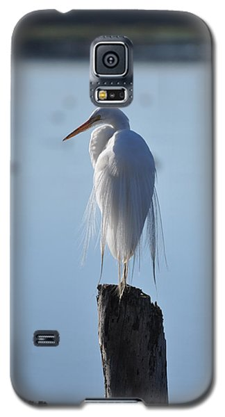 Perching Egret Galaxy S5 Case