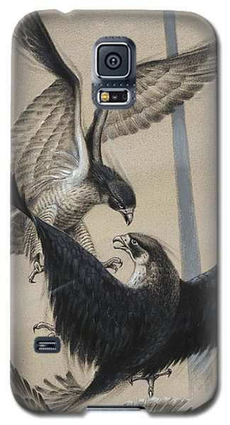 Peregrine Falcon And Kestrel Galaxy S5 Case