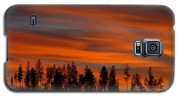 Perfect Evening Galaxy S5 Case
