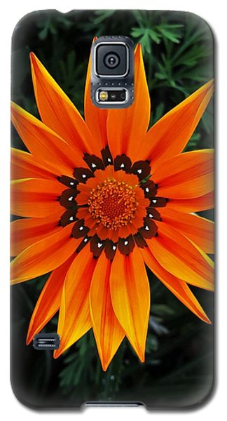 Perfect Flower  Galaxy S5 Case