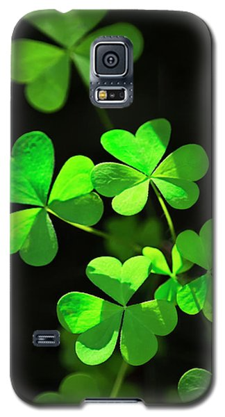 Perfect Green Shamrock Clovers Galaxy S5 Case by Christina Rollo