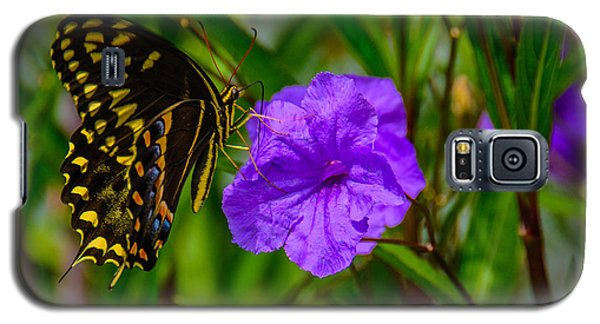 Perfect Harmony  Galaxy S5 Case by John Harding