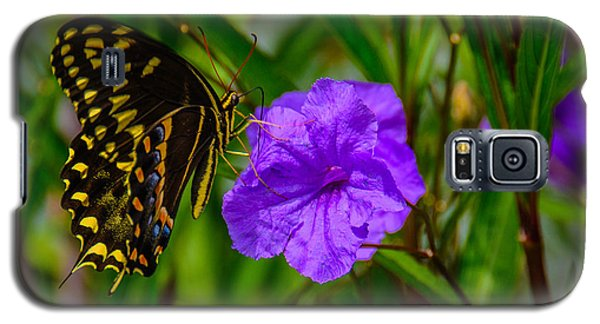 Galaxy S5 Case featuring the photograph Perfect Harmony  by John Harding