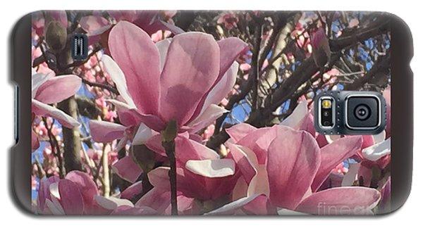 Perfect Pink Petals Galaxy S5 Case