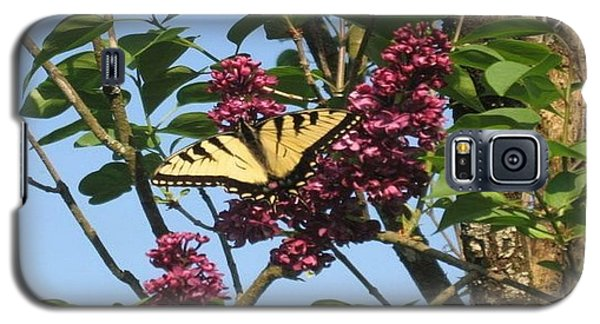 Yellow Swallowtail And Lilac Galaxy S5 Case