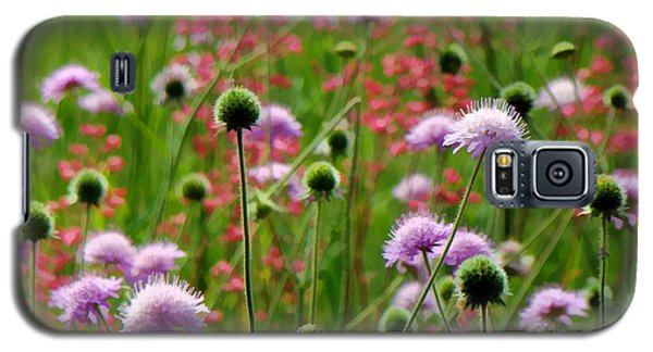 Perky Chives Galaxy S5 Case by Betsy Zimmerli