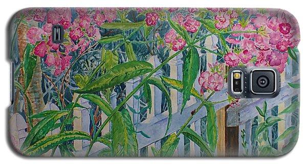 Perky Pink Phlox In A Dahlonega Garden Galaxy S5 Case
