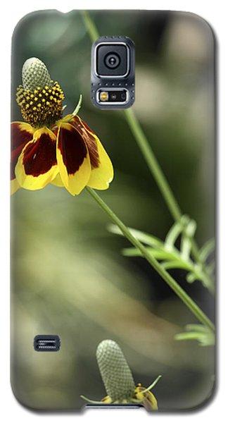 Perky Yellow Galaxy S5 Case