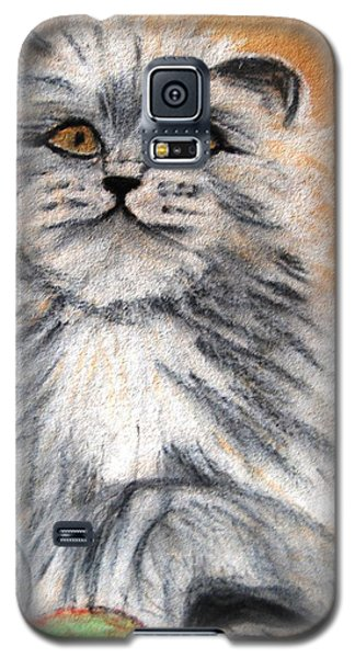 Persian Cat Galaxy S5 Case by Angela Murray