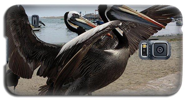 Galaxy S5 Case featuring the photograph Peruvian Pelicans by Aidan Moran
