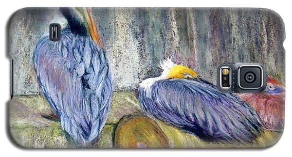 Galaxy S5 Case featuring the pastel Peruvian Pelicans Three Pastel by Antonia Citrino