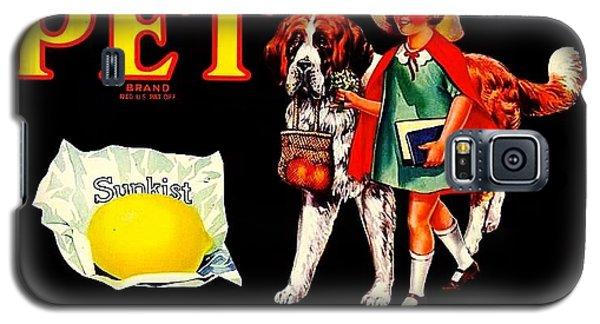Pet Saint Bernard 1920s California Sunkist Lemons Galaxy S5 Case by Peter Gumaer Ogden