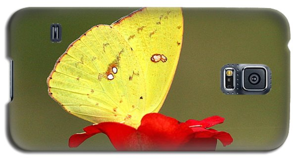 Petals And Wings Galaxy S5 Case by Sheila Brown