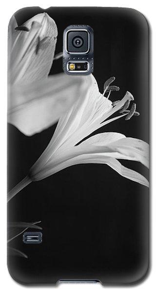 Petals' Light Galaxy S5 Case