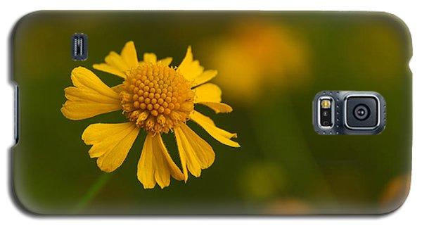 Petals Of Nature Galaxy S5 Case