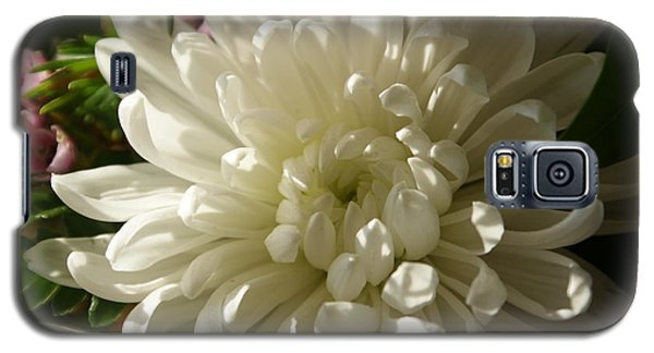 Petals Profusion Galaxy S5 Case