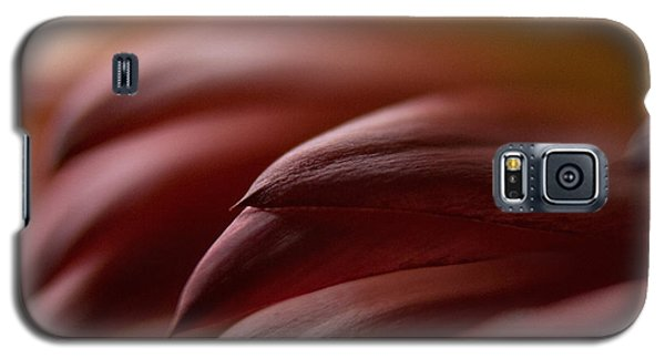 Galaxy S5 Case featuring the photograph Petals by WB Johnston