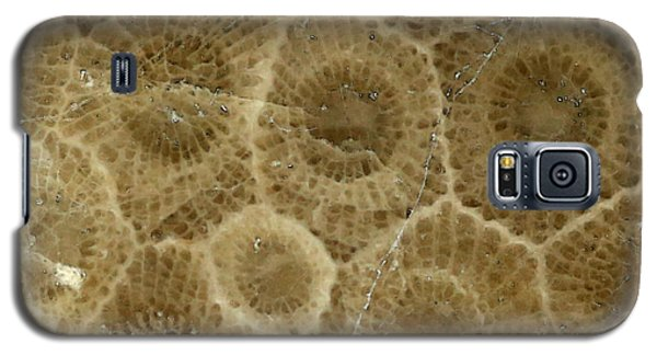 Petoskey Stone 3 Galaxy S5 Case