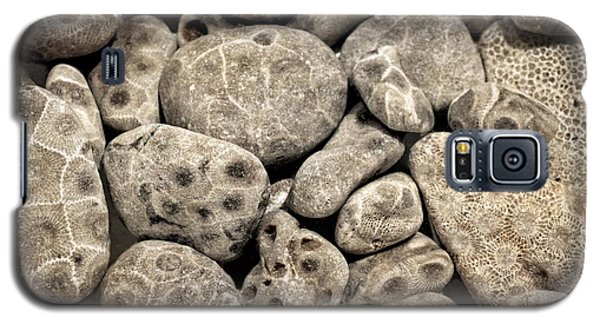 Petoskey Stones Vl Galaxy S5 Case