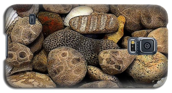 Petoskey Stones With Shells L Galaxy S5 Case