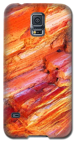 Petrified Abstraction No 1 Galaxy S5 Case