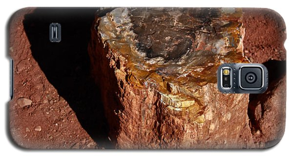 Petrified Forest Galaxy S5 Case