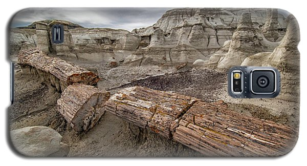 Petrified Remains Galaxy S5 Case by Alan Toepfer