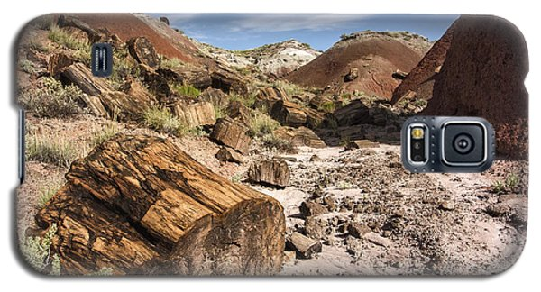 Galaxy S5 Case featuring the photograph Petrified Wood In The Painted Desert by Melany Sarafis