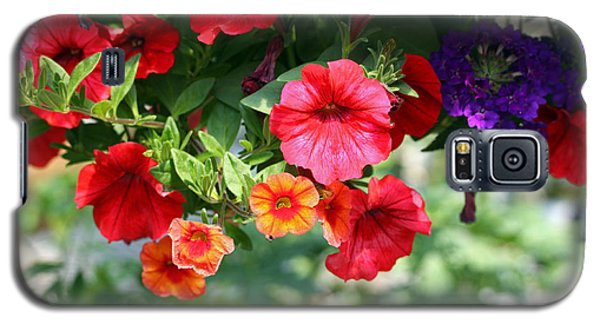 Galaxy S5 Case featuring the photograph Petunias by Denise Pohl