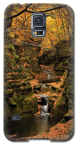 Pewit's Nest - Wisconsin Galaxy S5 Case