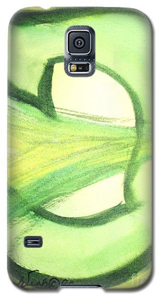 Pey Formation Galaxy S5 Case