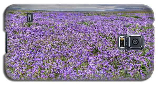 Galaxy S5 Case featuring the photograph Phacelia Field And Clouds by Marc Crumpler