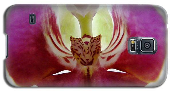 Phalaenopsis Orchid Detail Galaxy S5 Case by Valerie Ornstein