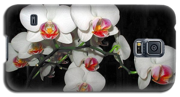 Phalaenopsis Orchids Galaxy S5 Case by Joyce Dickens