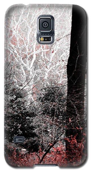Phantasm In Wildwood Galaxy S5 Case
