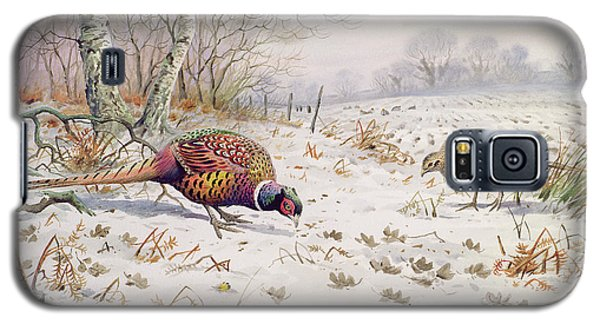 Pheasant And Partridge Eating  Galaxy S5 Case by Carl Donner