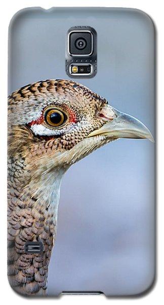 Pheasant Hen Galaxy S5 Case