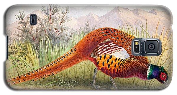 Pheasant Galaxy S5 Case